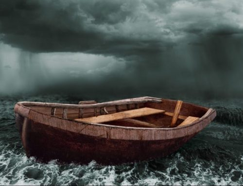 Capital Insights: Finding Calm in the Storm